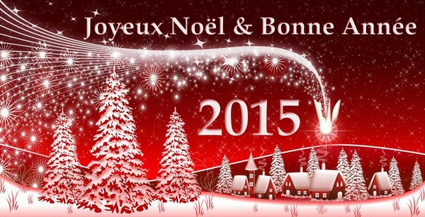Joyeux-Noel-et-Bonne-Annee-2015-La-Plume-de-Gallardon-LPG28[1]